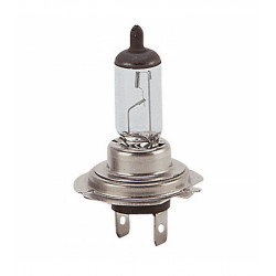 Lampade H7 12V 55W 10Pz.