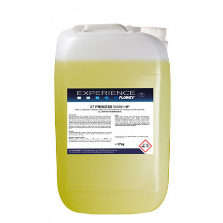 Detergente per prelavaggio Process Wash HP linea Experience
