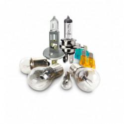 Kit lampade con alogena H1+H7 12V 55W