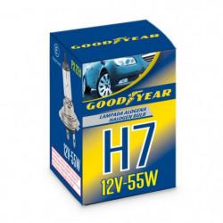 Lampada alogena Singola H7 12V-55W PX 22d